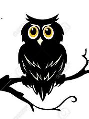 Owls and the Moon Art Program